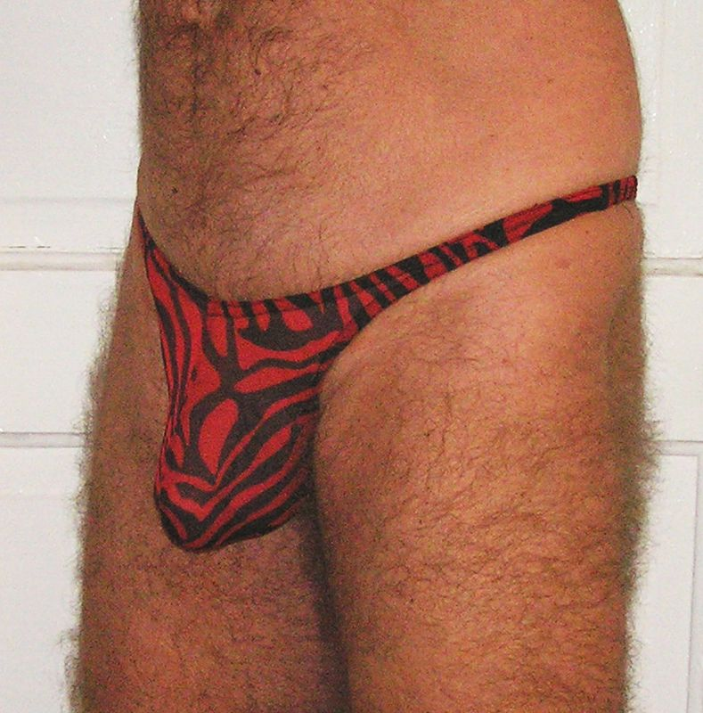 Moderate basic pouch thong